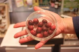 Large-fruited cranberry